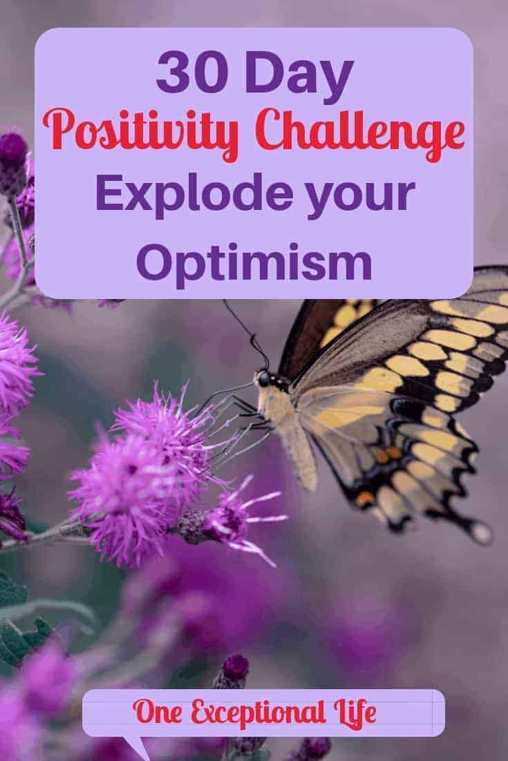30 Day Positivity Challenge to Explode your Optimism