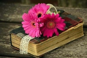 an image of a worn bible with pink flower on top with text reading A 1 Corinthians Devotional