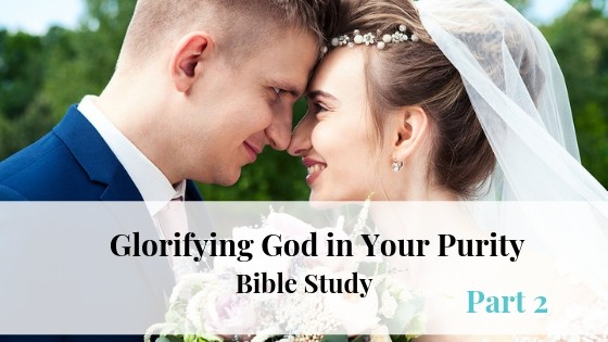 Glorifying God in Your Purity Part 2
