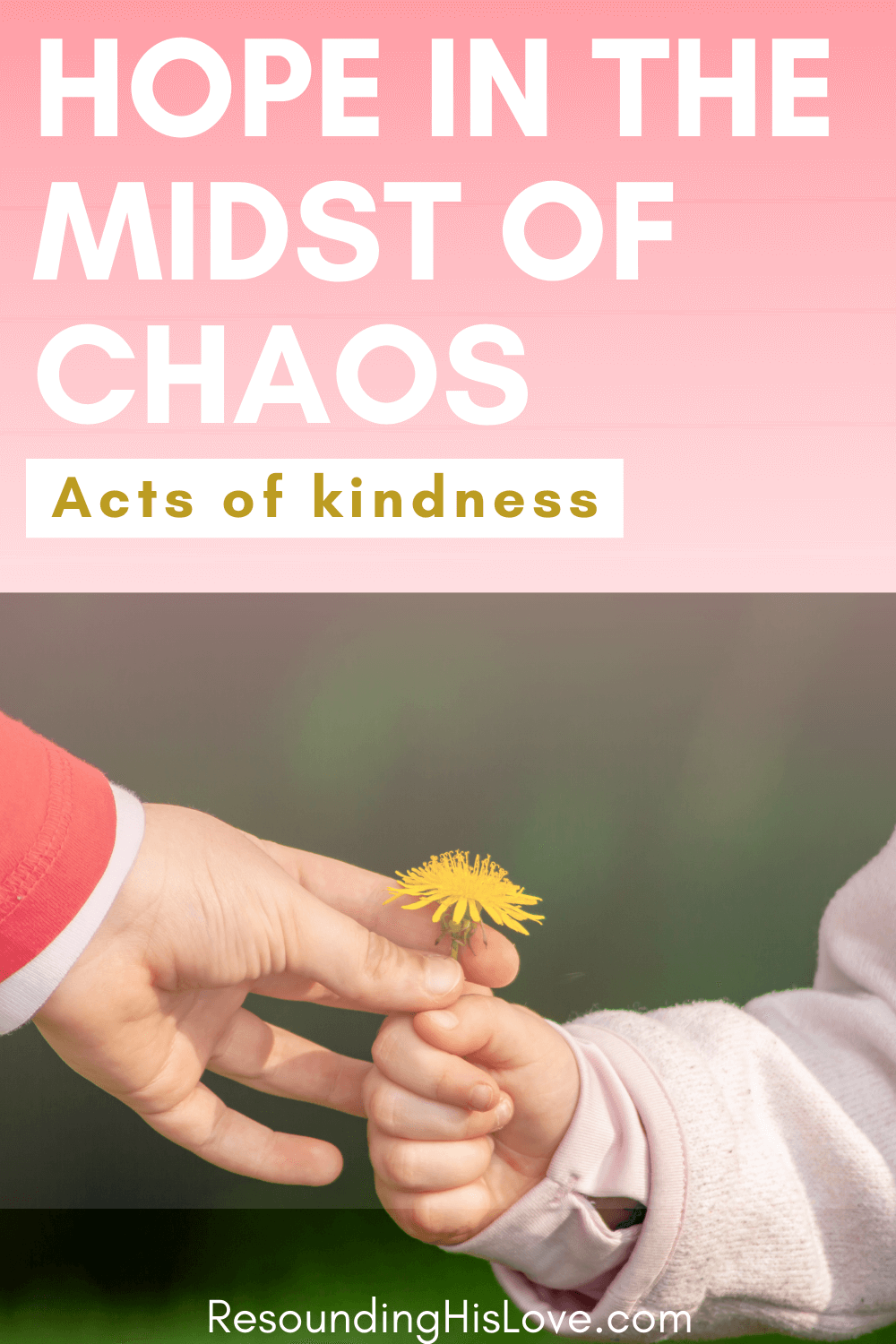 someone giving another a flower with text Hope in the Midst of Chaos Acts of Kindness