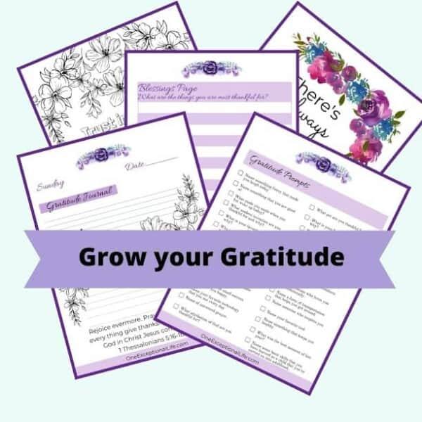 Grow Your Gratitude